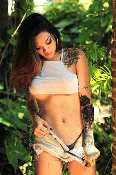 Alana Lima  ROMA 3341138823