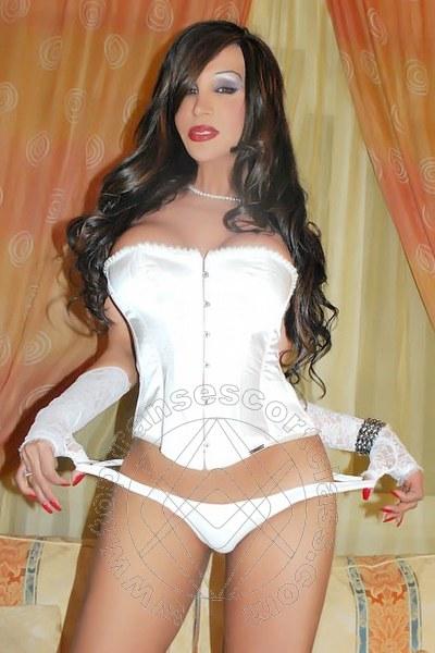 Rosa Xxxl  PRATO 3338976927